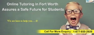 online tutoring in Fort Worth, online tutor,