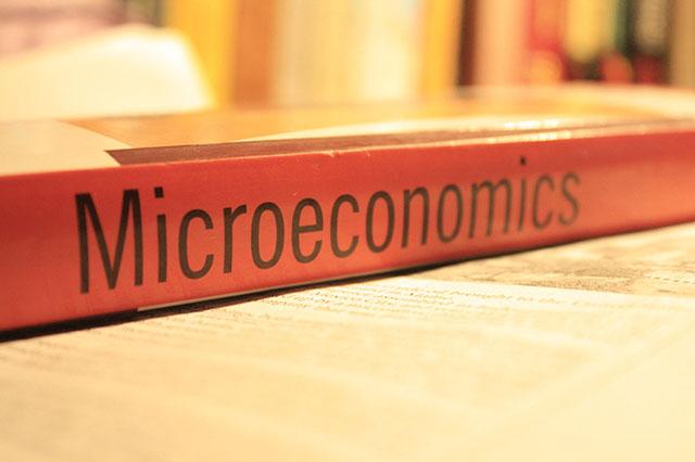 online microeconomics tutor